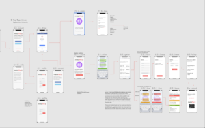 metaMe OZM user flow